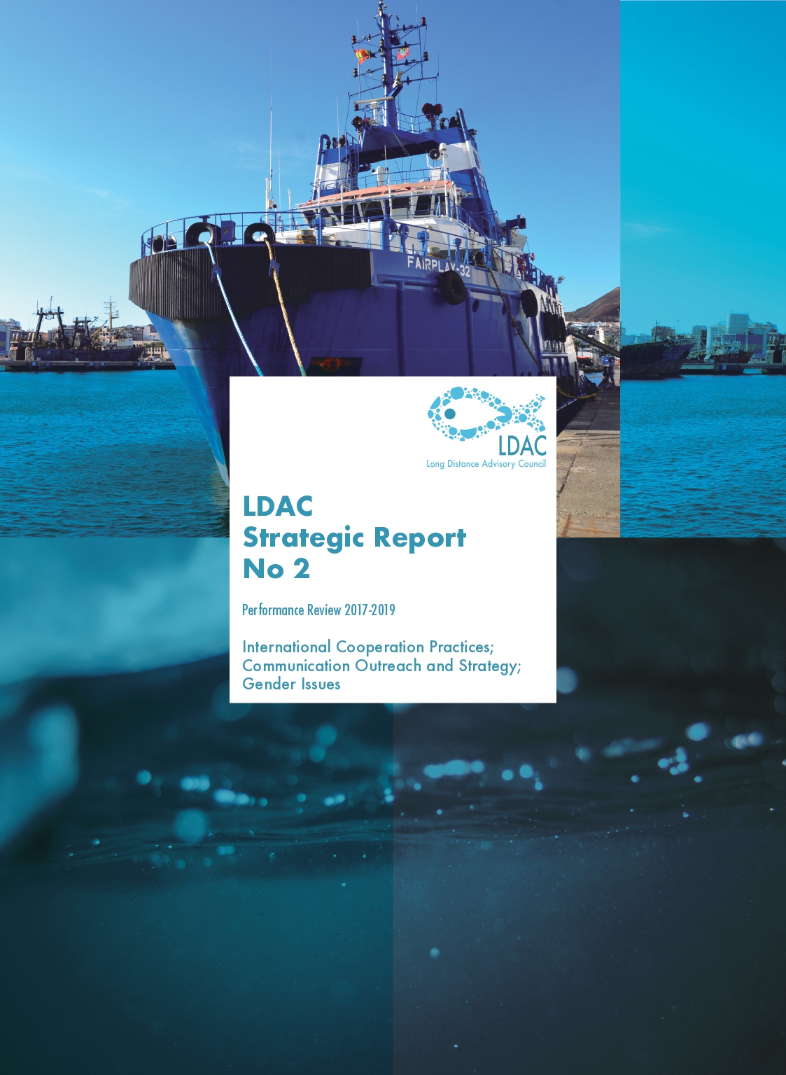 LDAC Performance Review 2020 (Phase II)